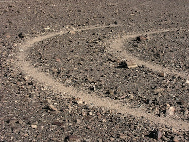 Tire tracks in the desert are forever